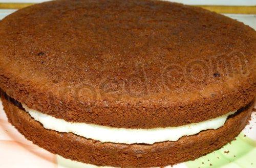 Птичье молоко торт без коржа