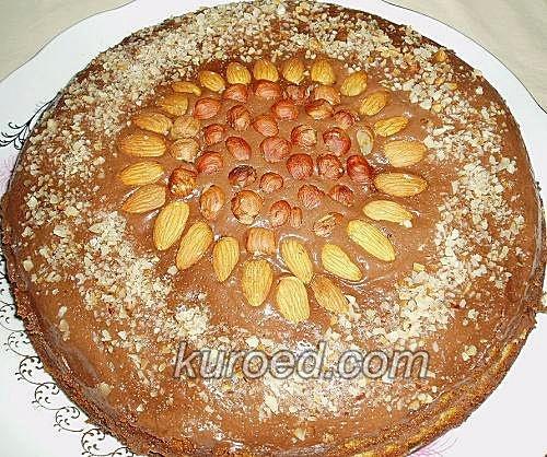 Медовый бисквит с шоколадным кремом